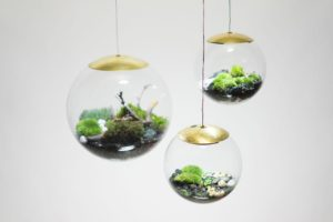 Create Your Own Mini-Garden With These Terrarium Lamps