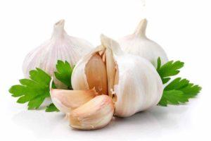 Garlic Cure For Hypertension