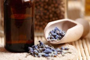Lavender Cure For Baldness