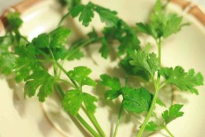 Parsley Cure For Fatigue